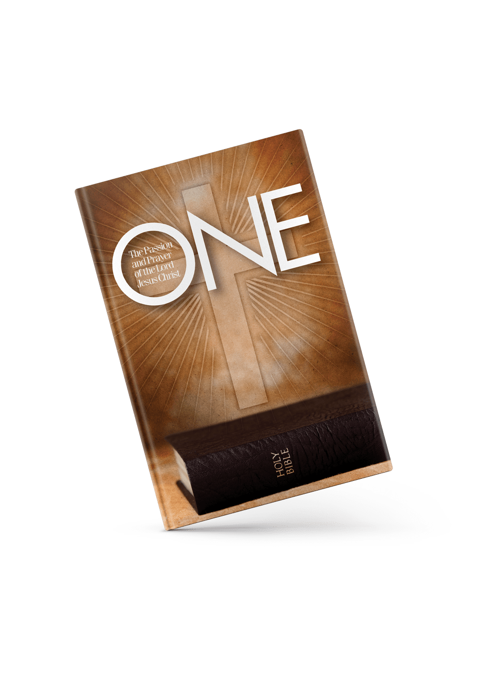 One: The Passion and Prayer of the Lord Jesus Christ Book Cover angle view