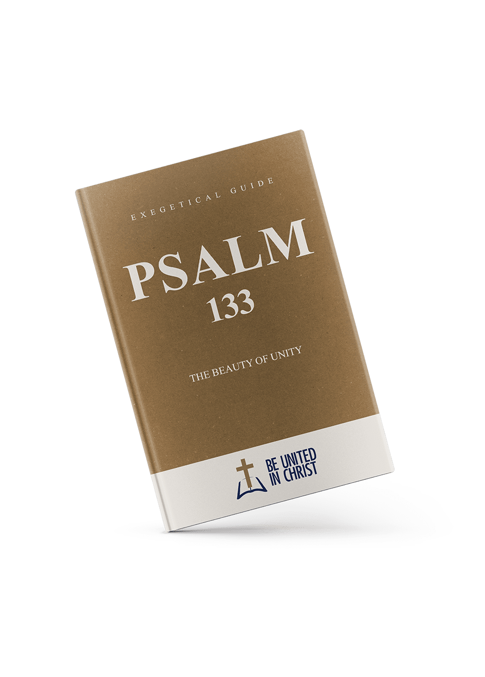 Psalm 133 Book Cover angle view